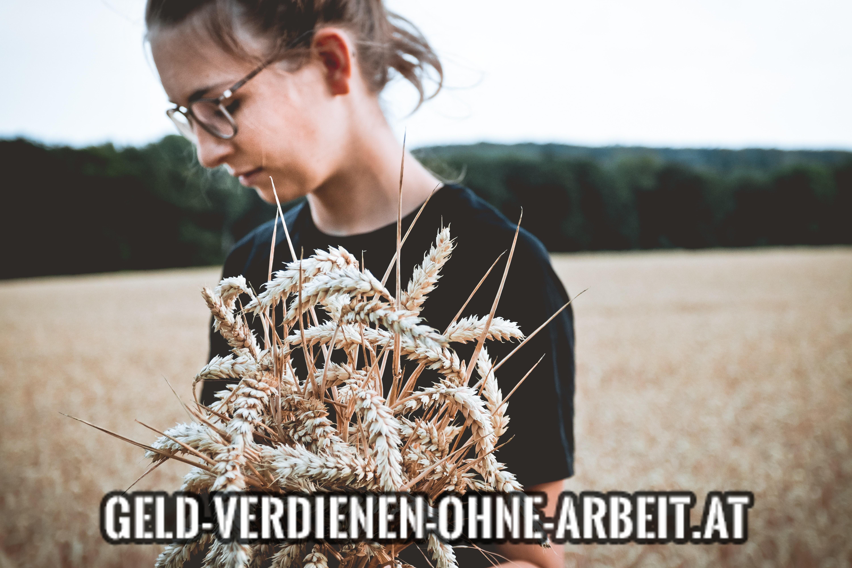 Geld verdienen Landwirtschaft
